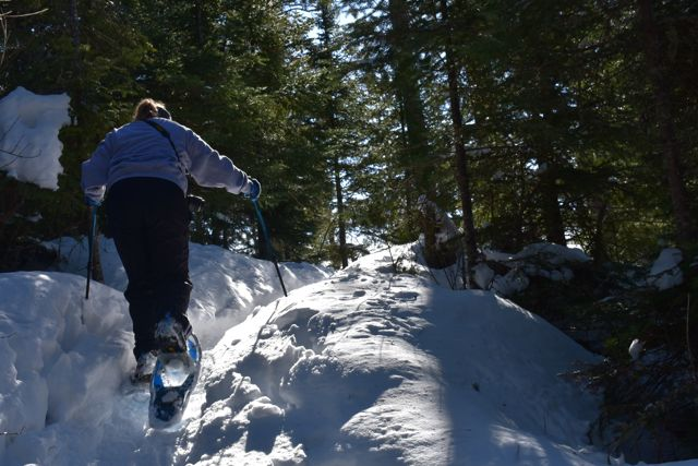 snowshoeing trail