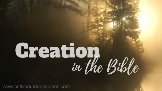creation in the bible