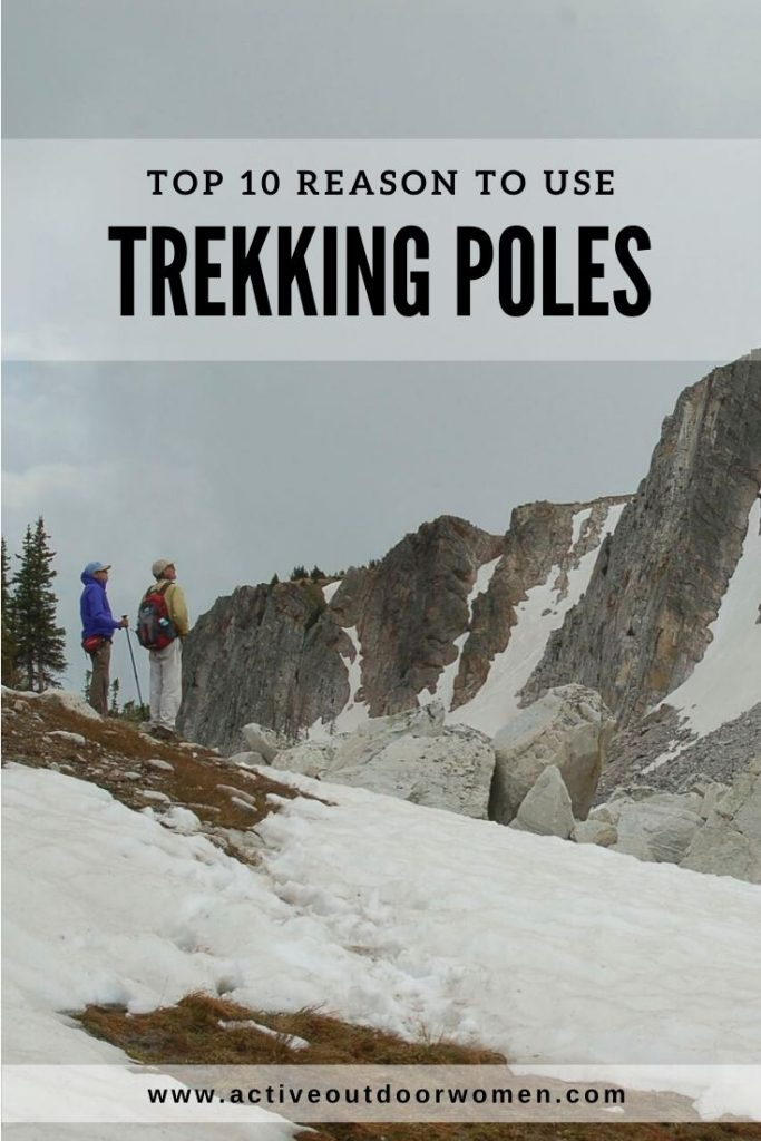 top 10 reasons to use trekking poles