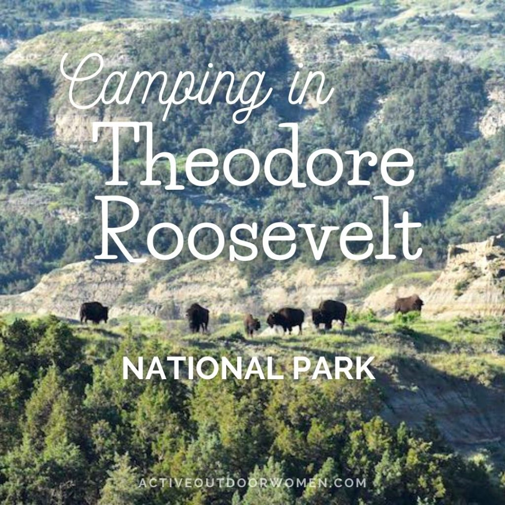 camping in theodore roosevelt national park